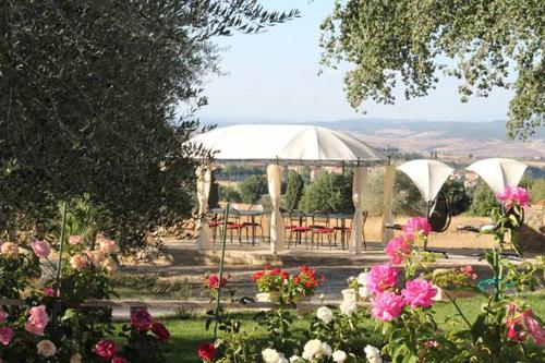 Agriturismo e Olio di oliva