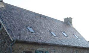 IDS QUATERNET CR - Anti-mousse concentré pour toiture et mur