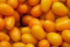 kumquat - Fruits