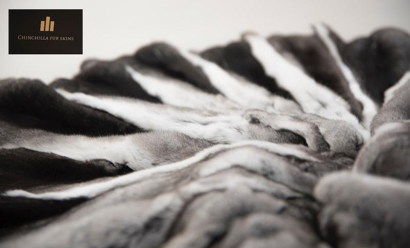 Chinchilla natural fur professionally tanned pelt skin damag - Chinchilla natural luxury fur soft professionally tanned pelt skin small damage