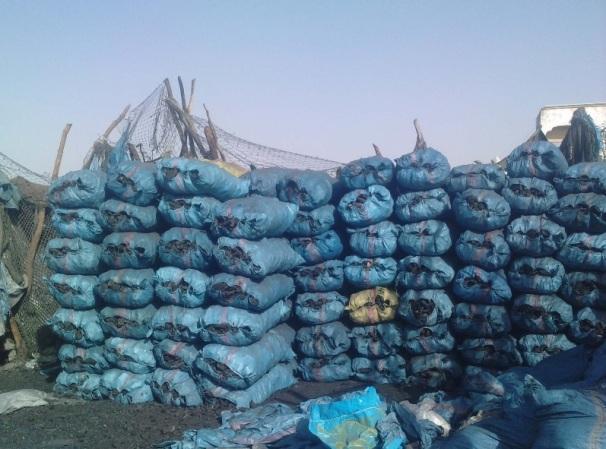 charbon de bois -