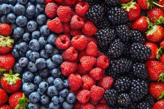 Todas frutas do Brasil - Framboesa, carambola, amora, manga...