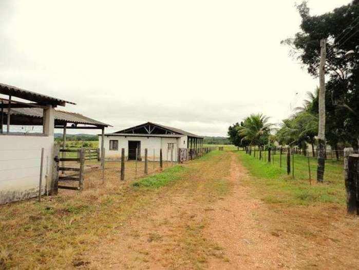 Farmland for sale in Mato Grosso Brasil - Reference: FARM MT-001