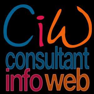 Consultant SEO (référencement naturel) -