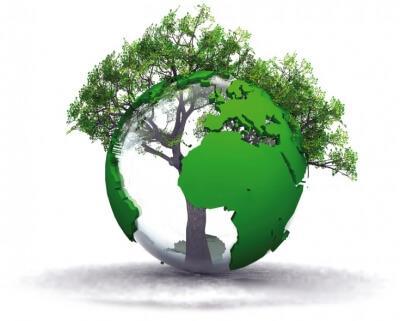 I sistemi di certificazione ambientale - I Sistemi di Gestione per le Certificazioni Ambientali sostenibilità Ambientale