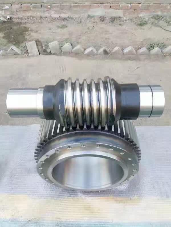 worm shaft and worm gear CNC - High precision worm gears machining