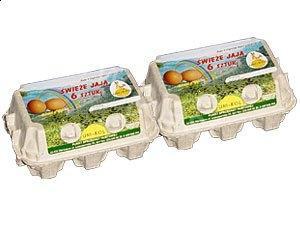 Eierverpackung - Verarbeiter und Hersteller