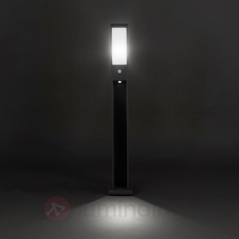 Borne lumineuse futée LED Two-Light à capteur - Bornes lumineuses avec détecteur