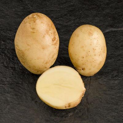 Potatoes - Yellow skin - REMARKA