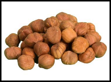Fresh Hazelnut Kernels -