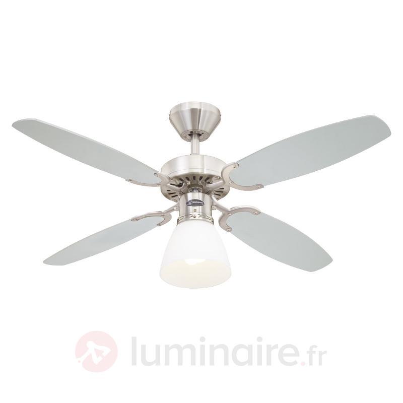 Capitol - ventilateur de plafond avec ampoule - Ventilateurs de plafond modernes