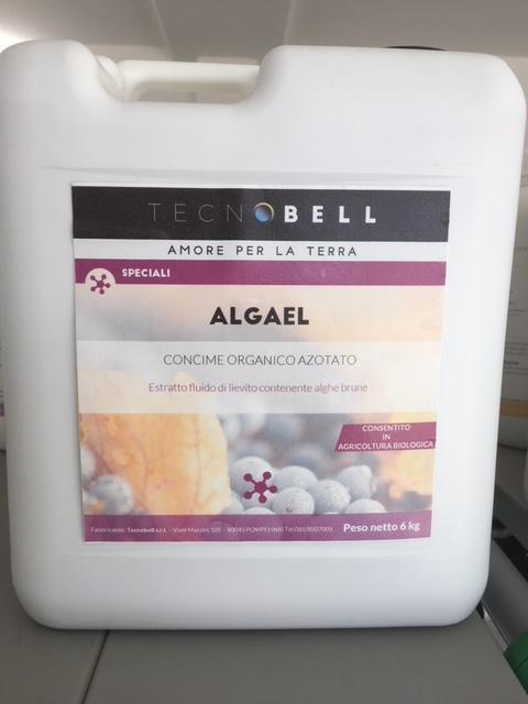 Algael - Seaweed organic fertilizer