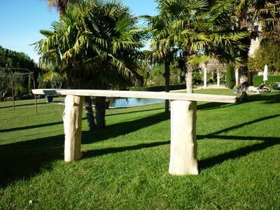 Troncs de bois flott entreprises for Bois flotte beziers