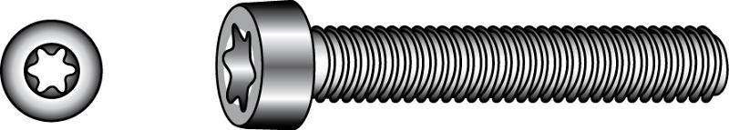 Socket head cap screws with TX-six lobe drive and low head - Material A2 | A4