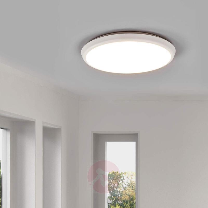 Simple LED ceiling lamp Augustin, 30 cm - Ceiling Lights