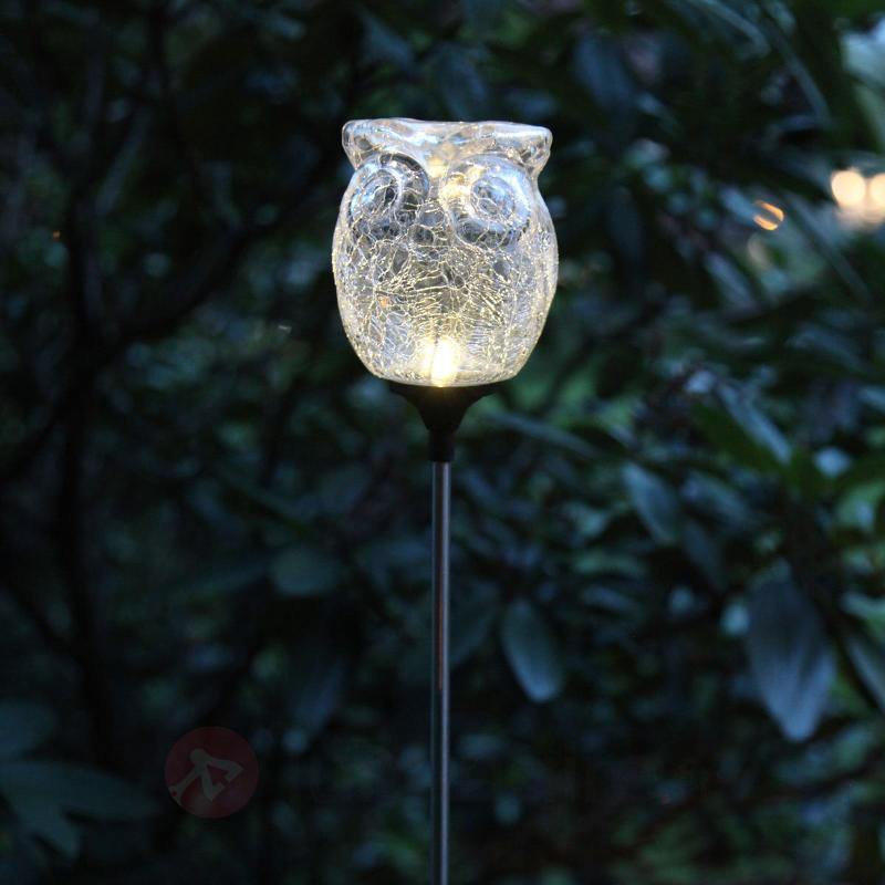 Lampe solaire LED Chouette en verre brisé - Lampes solaires décoratives