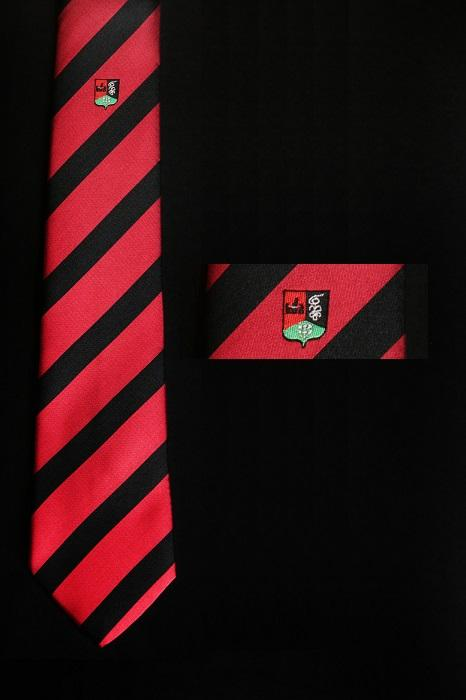 Pour véhiculer votre image, optez pour les cravates à rayures - cravate tissée à rayures (élèves, Académie St louis , Belgique)