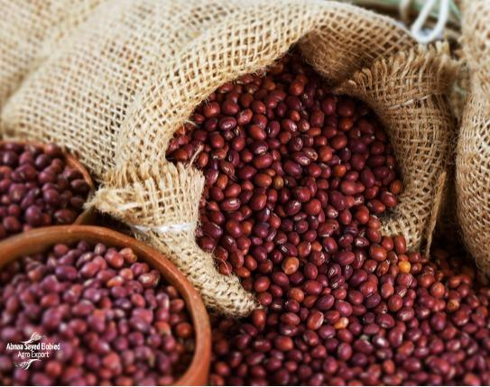 Pigeon Pea - A common food grain and a major source of protein