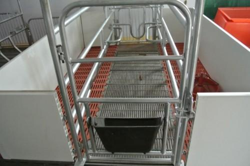 Pig/sow /piglet/piggery PVC farrowing crate/stall - Pig/sow /piglet/piggery farrowing crate/ Gestation/stall/pen