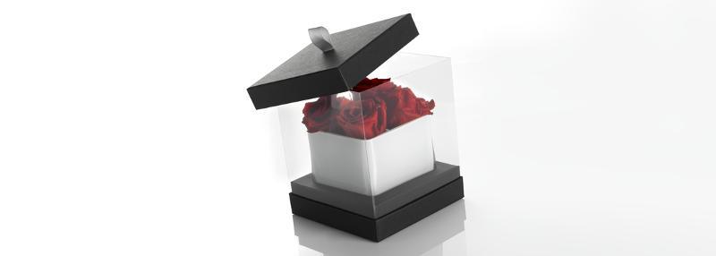 Cosmétique et Parfumerie - Cartonnages