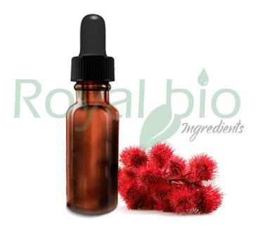 Organic Castor Vegetable Oil - null