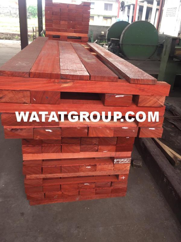 PADOUK WOOD - Padauk Hardwood Timber