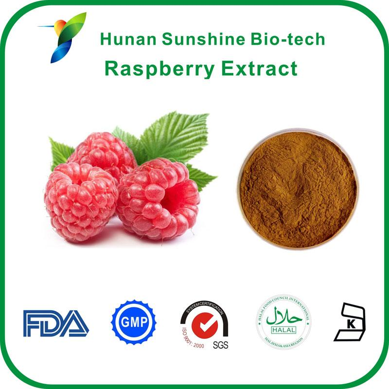 Raspberry Extract - Fruit&Vegetable Powder
