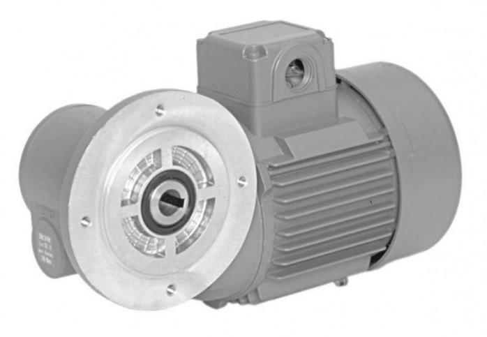 SN3FH - Einstufiger Getriebemotor mit Hohlwelle