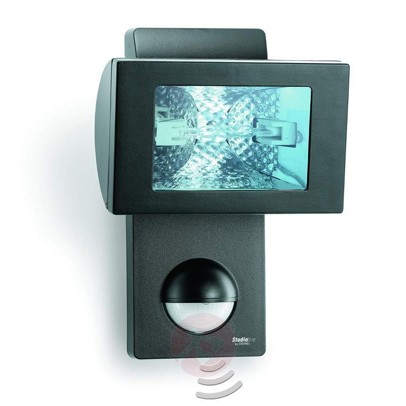 Xeno HS 152 halogen spotlight with sensor - Outdoor Spotlights