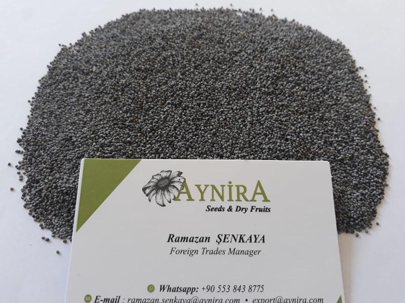 Turkish Origin Poppy Seeds - Blue Poppy Seeds; Sortex or Machine Cleaned