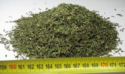 Thyme leaves - quality III