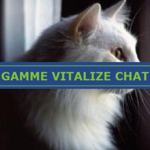 Aliment complet pour chat