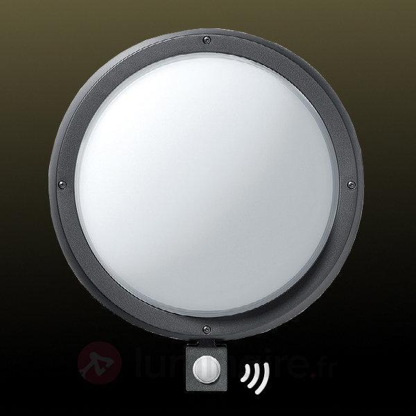 Grande applique d'ext EKO 29 cm avec détecteur - Appliques d'extérieur avec détecteur