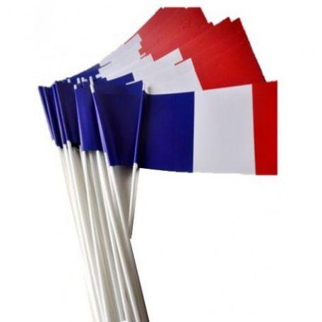 Lot De Petits Drapeaux Français En Papier À Agiter - Cérémonies Officielles