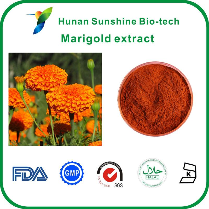 Marigold extract - Plant Extracts