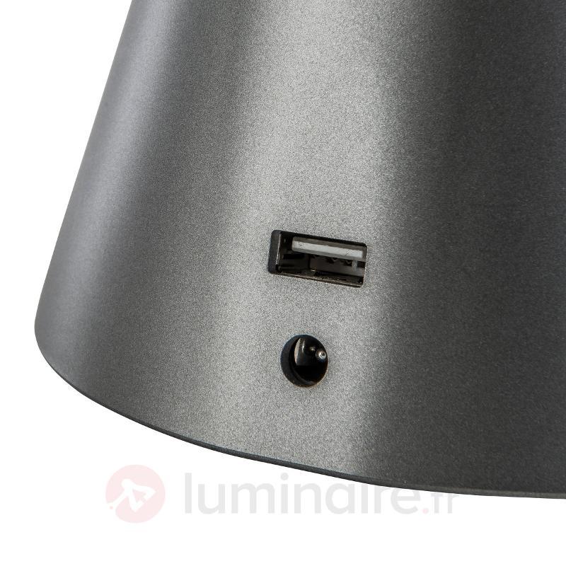 Lampe à poser LED flexible Snake, couleur titane - Lampes de bureau LED