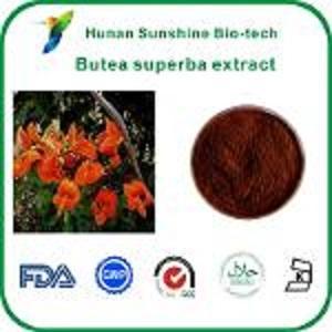 Выдержка из Buba superba - Экстракты растений