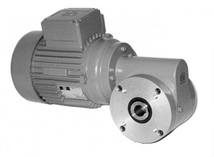 SN8BFH - Einstufiger Getriebemotor mit Hohlwelle