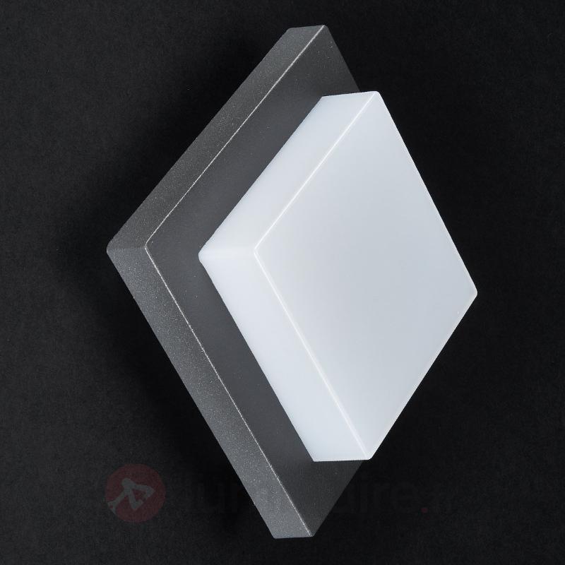 Applique d'extérieur LED Celeste au design simple - Appliques d'extérieur LED