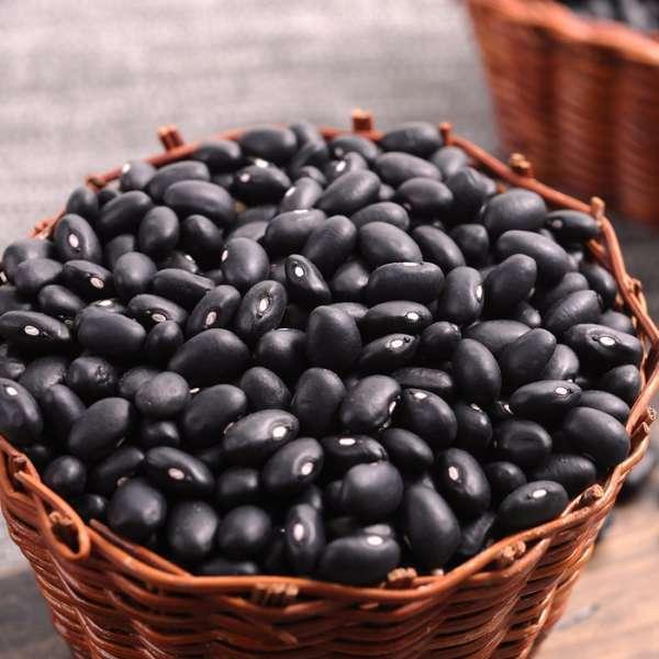 Black Kidney Beans / Black Bean with Yellow / Green Kernel -