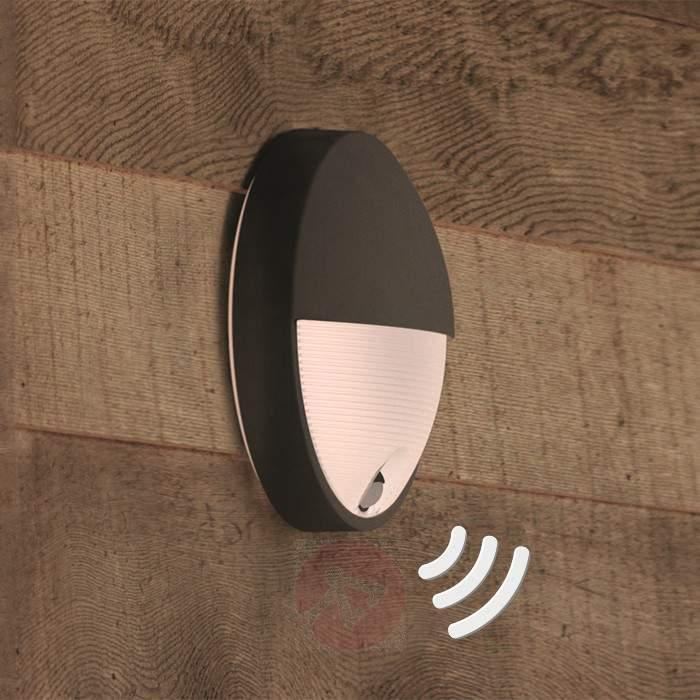 Capricorn - LED outdoor wall light with sensor - Outdoor Wall Lights