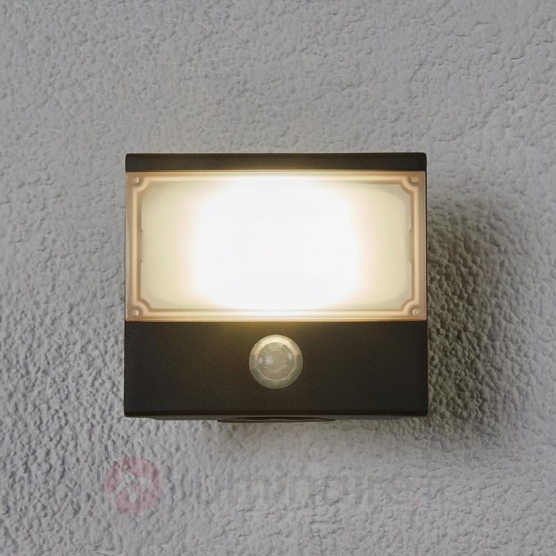 Auron - projecteur ext. LED fonctionnel, détecteur - Projecteurs d'extérieur LED