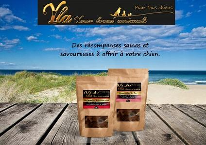 -Gourmandises- par YLA  - FRIANDISES NATURELLES SANS CEREALES POUR CHIEN