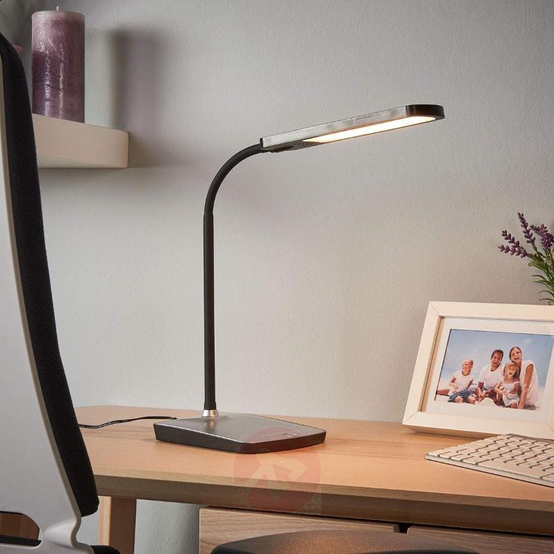 Leoris Led Desk Lamp With Usb Port Lamps