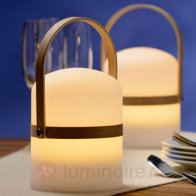 Lampe LED portative Joe pour intérieur/extérieur - Luminaires de terrasse