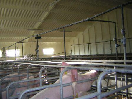 Isolation thermique bâtiments industriels et agricols