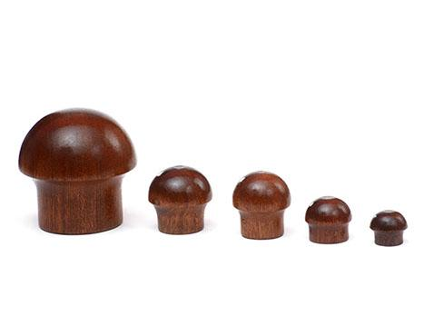 Clasps made of fine wood or in fine wood look - null