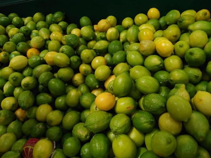 Далия Лимон - Желто-зеленый