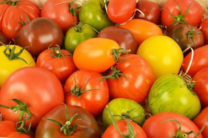Tomates spéciales - Légumes découvertes