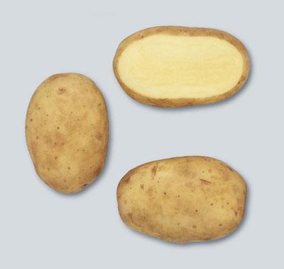 Potatoes - Yellow skin - RAMOS